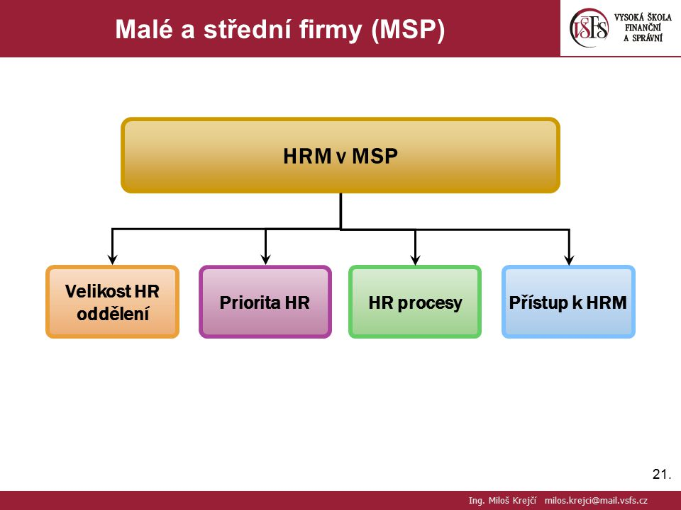 Malé a střední firmy (MSP)