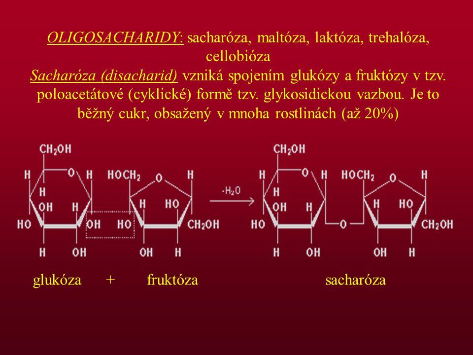 OLIGOSACHARIDY: sacharóza, maltóza, laktóza, trehalóza, cellobióza