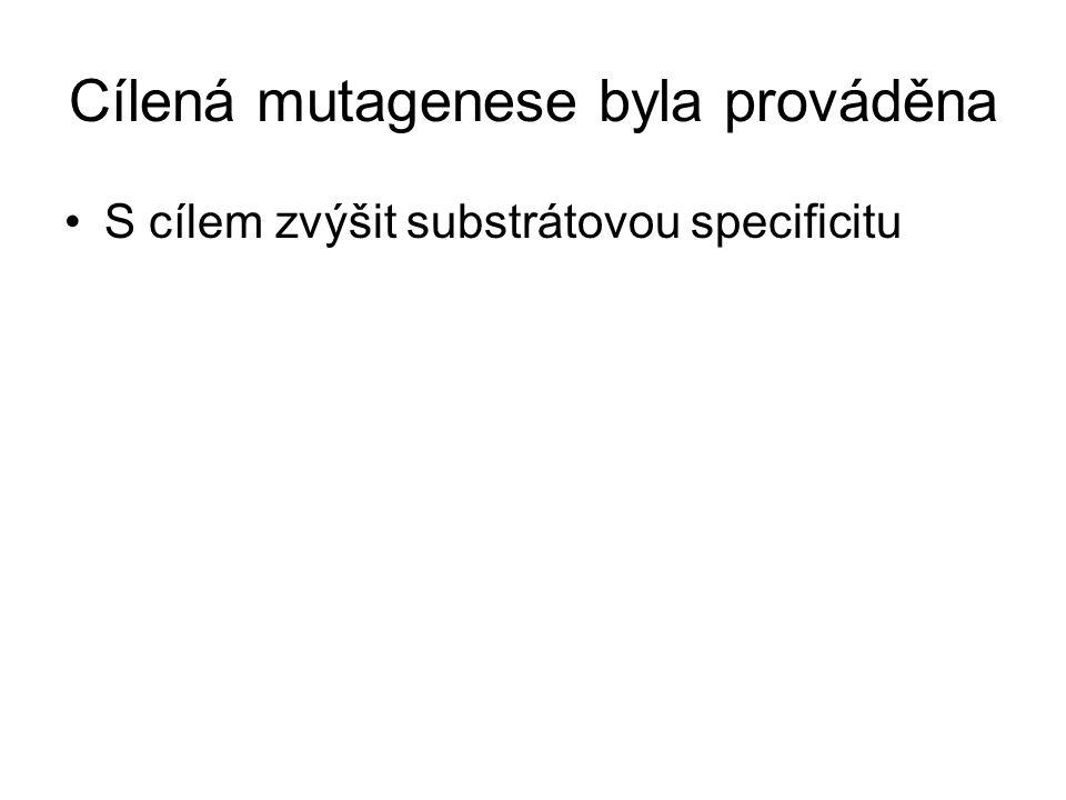 Cílená mutagenese byla prováděna