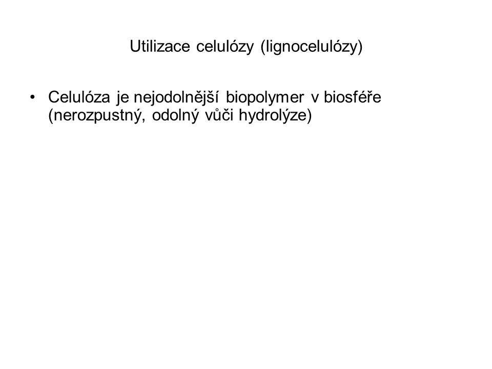 Utilizace celulózy (lignocelulózy)