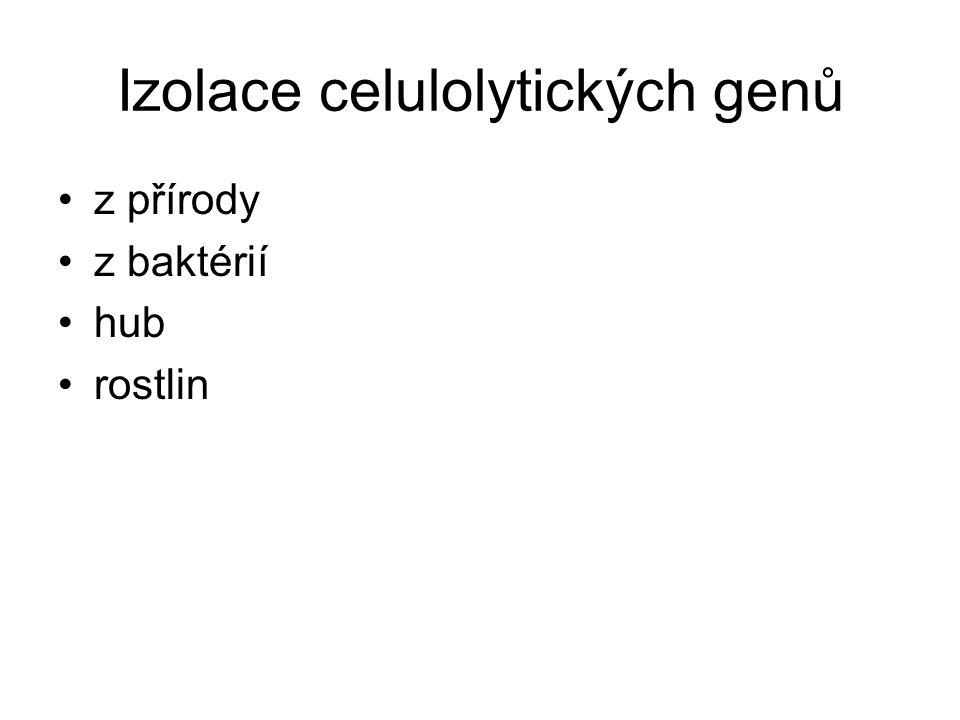 Izolace celulolytických genů