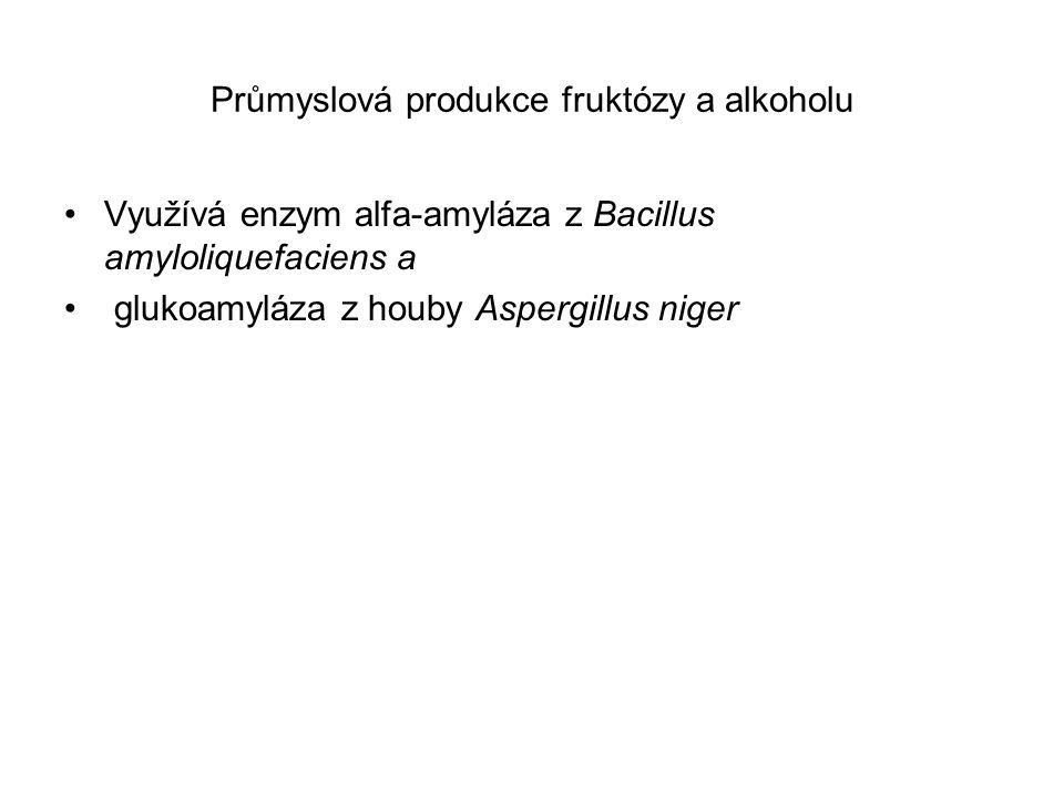 Průmyslová produkce fruktózy a alkoholu