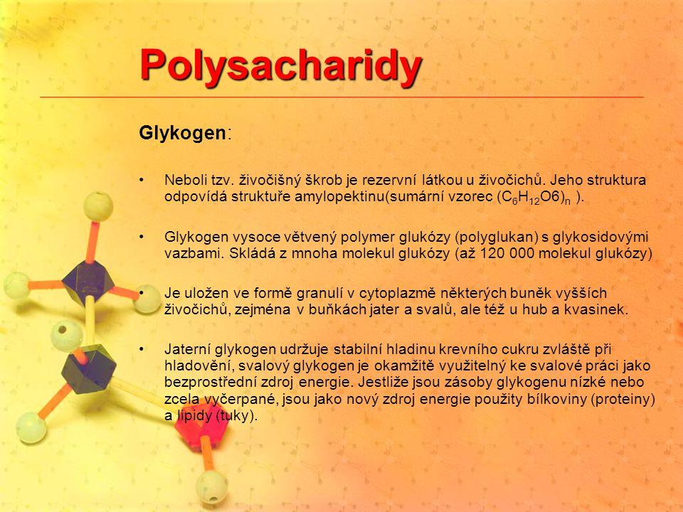 Polysacharidy Glykogen: