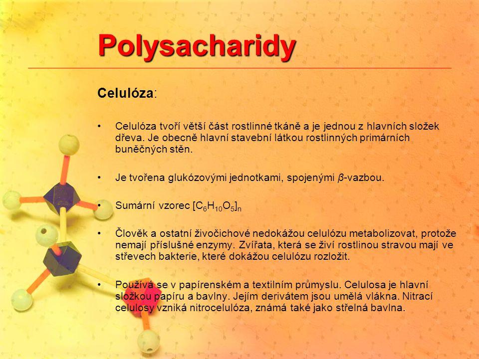 Polysacharidy Celulóza:
