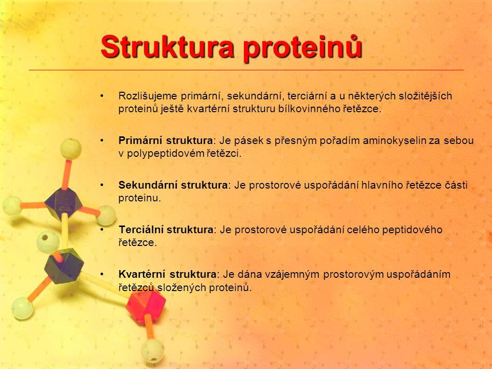 Struktura proteinů Rozlišujeme primární, sekundární, terciární a u některých složitějších proteinů ještě kvartérní strukturu bílkovinného řetězce.