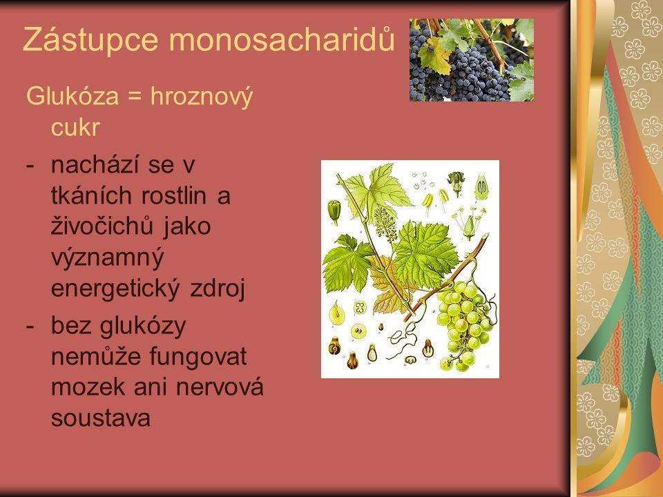 Zástupce monosacharidů