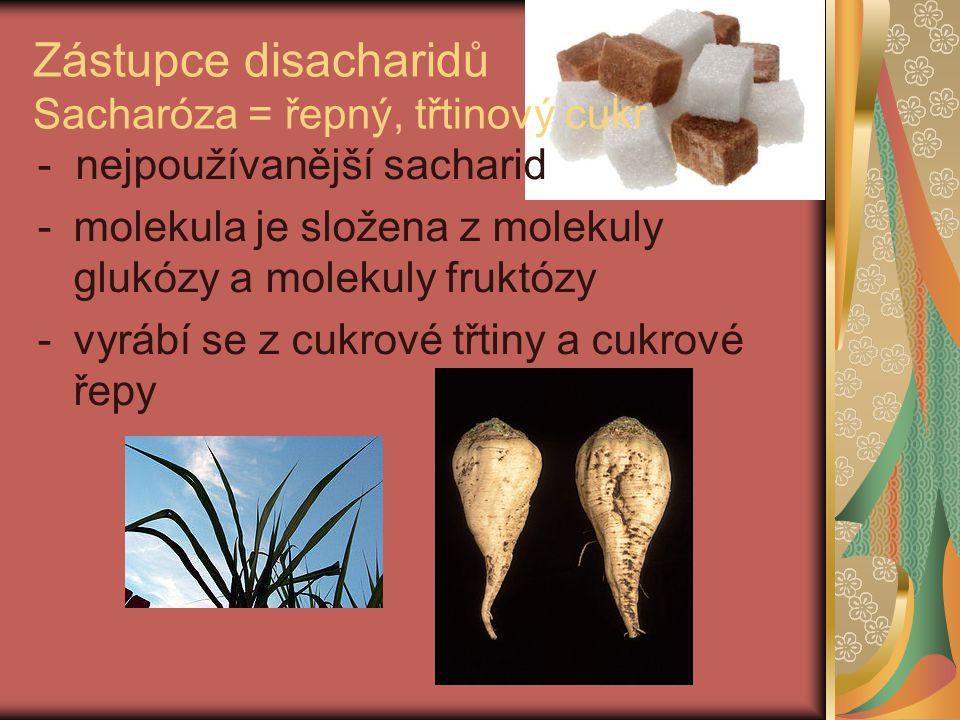Zástupce disacharidů Sacharóza = řepný, třtinový cukr