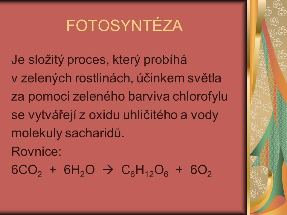 FOTOSYNTÉZA Je složitý proces, který probíhá
