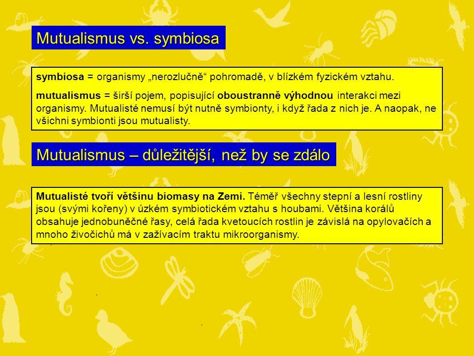 Mutualismus vs. symbiosa