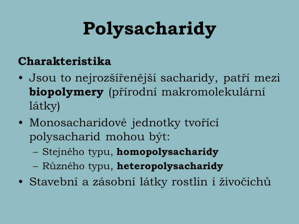 Polysacharidy Charakteristika