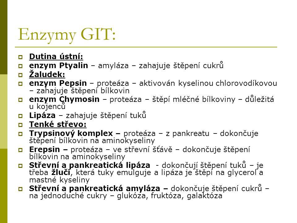 Enzymy GIT: Dutina ústní: