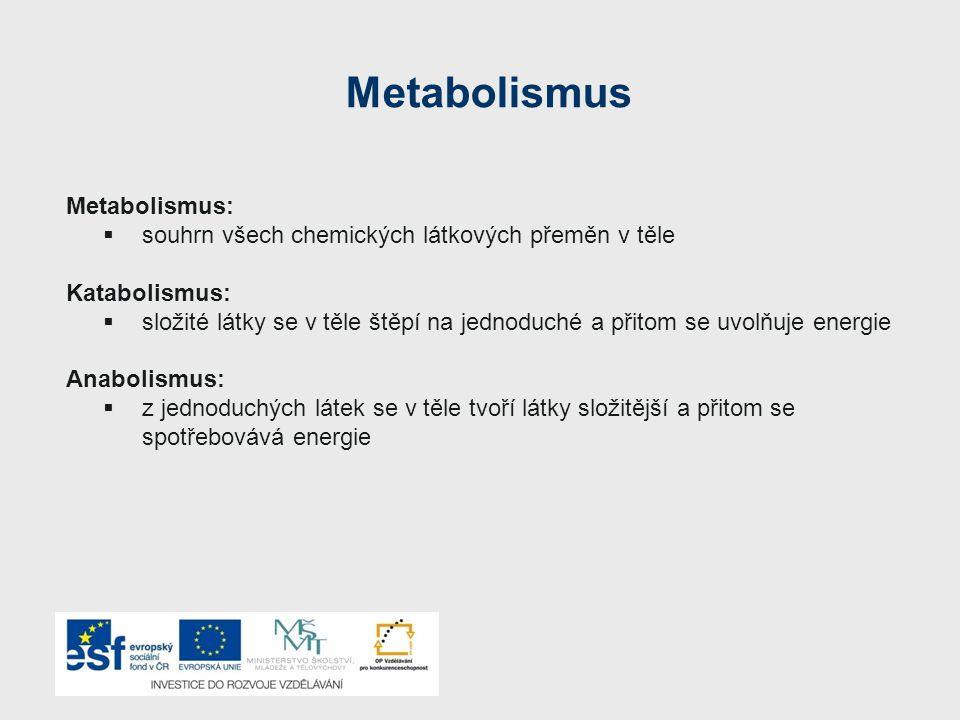 Metabolismus Metabolismus: