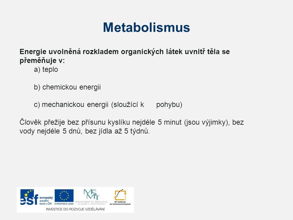 Metabolismus Energie uvolněná rozkladem organických látek uvnitř těla se přeměňuje v: a) teplo. b) chemickou energii.
