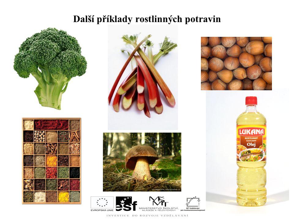 Další příklady rostlinných potravin