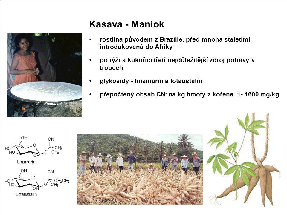 Kyanidový iont (CN-) Kasava - Maniok Chronické účinky