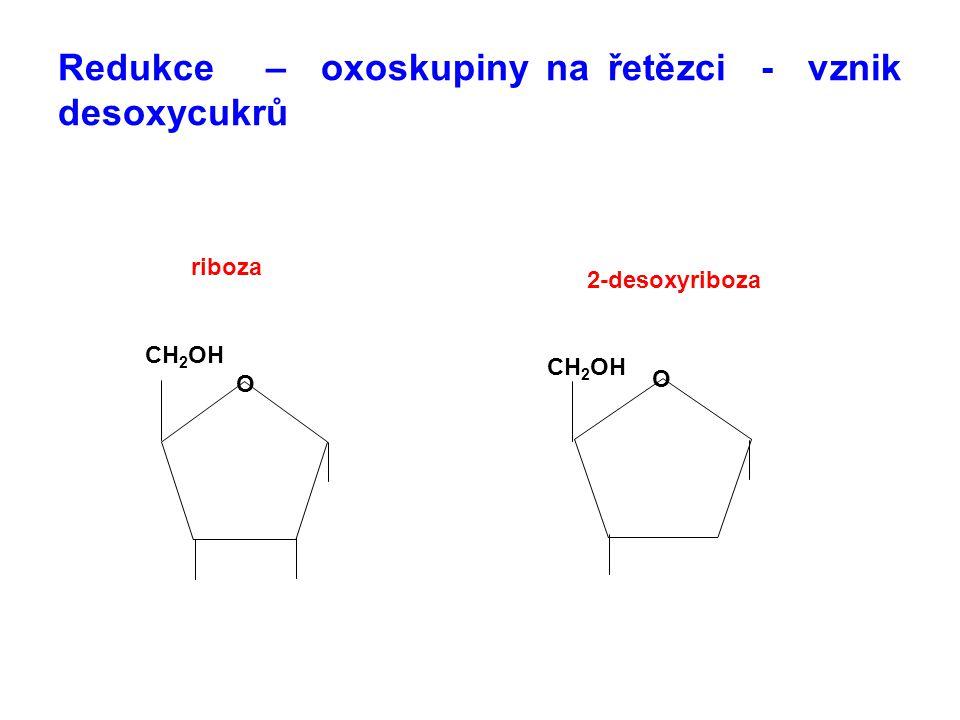Redukce – oxoskupiny na řetězci - vznik desoxycukrů