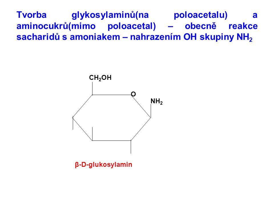 Glykosylaminy – nahrazena OH skupina v poloacetalu – nestálé snadno se rozkládají nebo přemění na aminocukry.