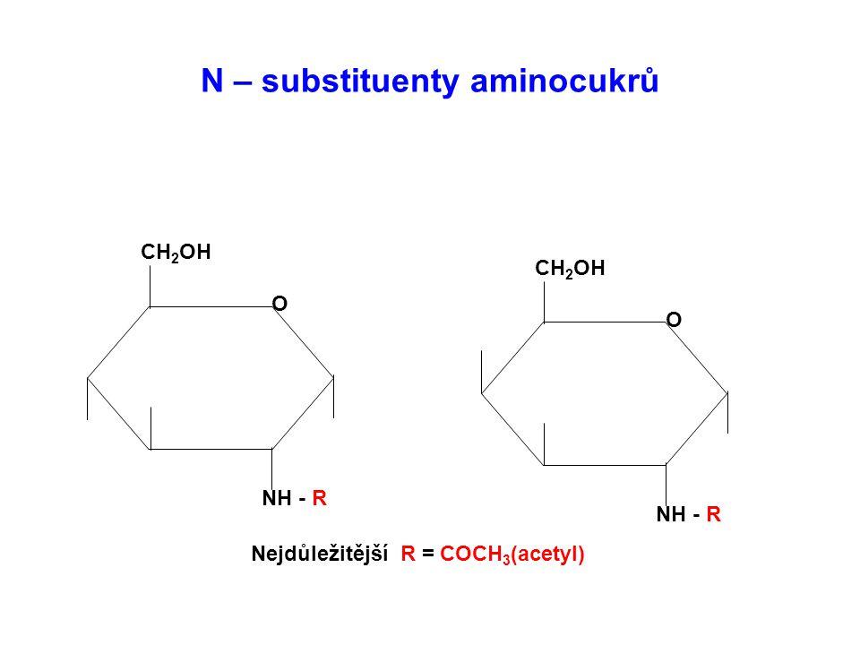 N – substituenty aminocukrů