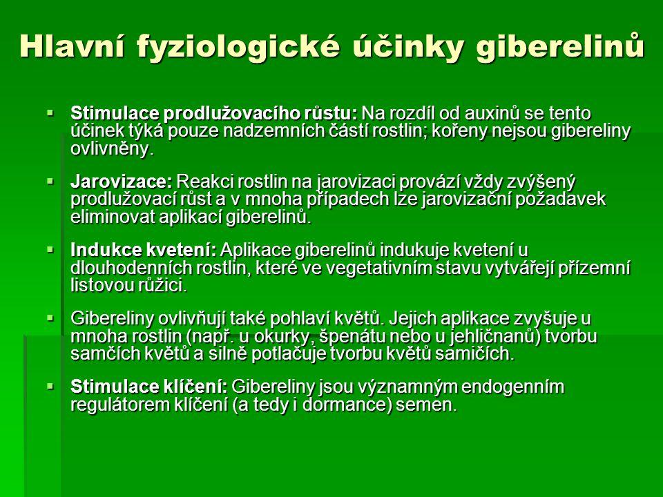 Hlavní fyziologické účinky giberelinů