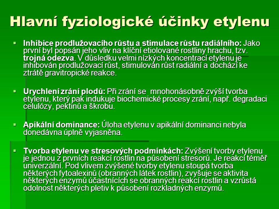 Hlavní fyziologické účinky etylenu