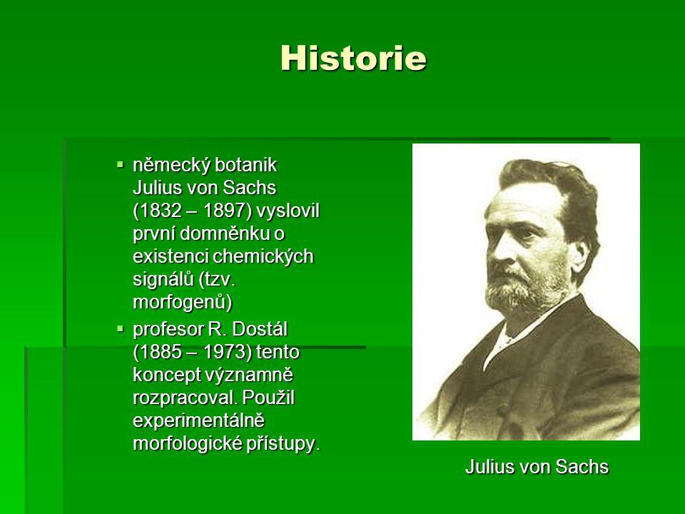 Historie německý botanik Julius von Sachs (1832 – 1897) vyslovil první domněnku o existenci chemických signálů (tzv. morfogenů)