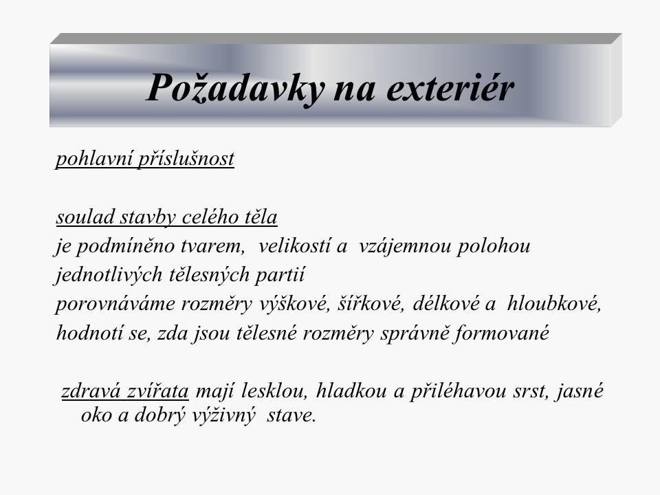 Požadavky na exteriér pohlavní příslušnost soulad stavby celého těla