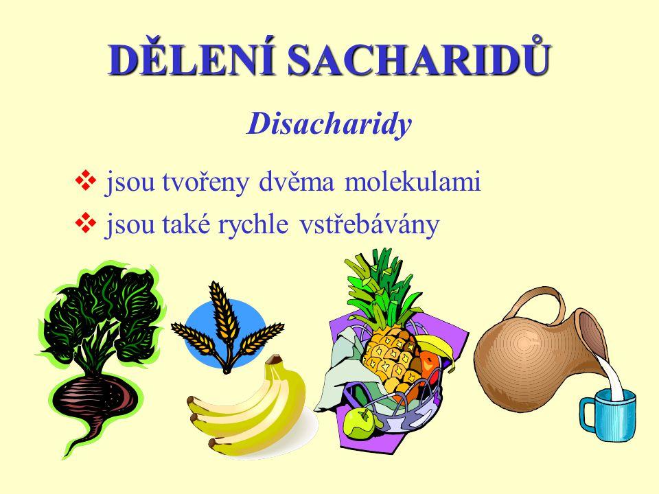 DĚLENÍ SACHARIDŮ Disacharidy jsou tvořeny dvěma molekulami