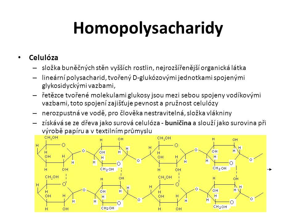Homopolysacharidy Celulóza