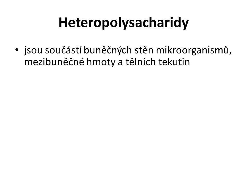 Heteropolysacharidy jsou součástí buněčných stěn mikroorganismů, mezibuněčné hmoty a tělních tekutin.