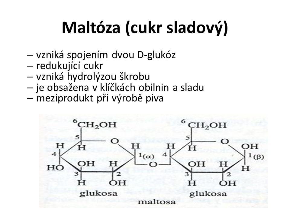 Maltóza (cukr sladový)