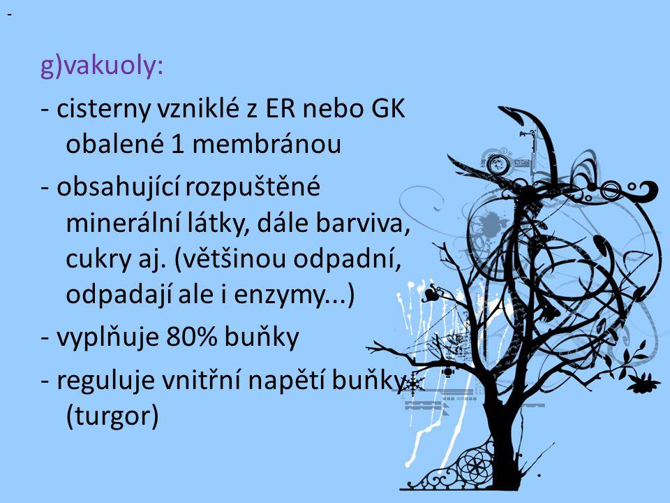 g)vakuoly: - cisterny vzniklé z ER nebo GK obalené 1 membránou.