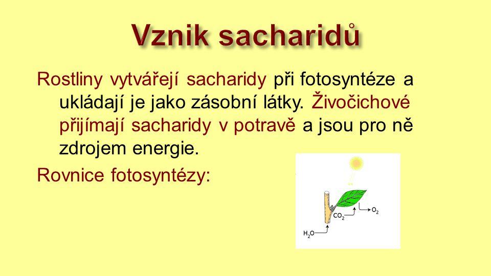 Vznik sacharidů