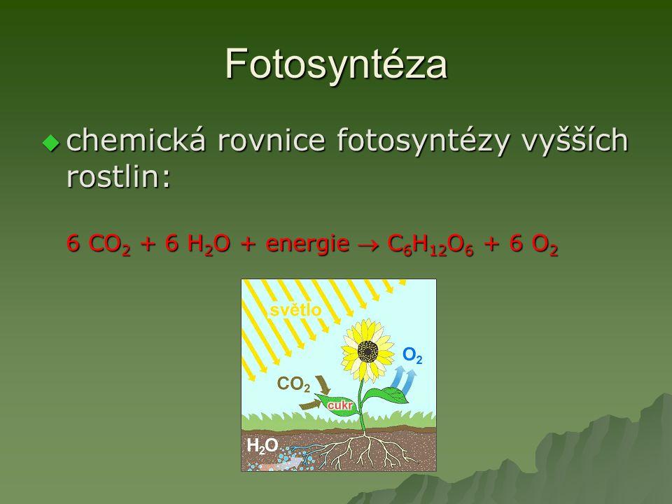 Fotosyntéza chemická rovnice fotosyntézy vyšších rostlin: 6 CO2 + 6 H2O + energie  C6H12O6 + 6 O2