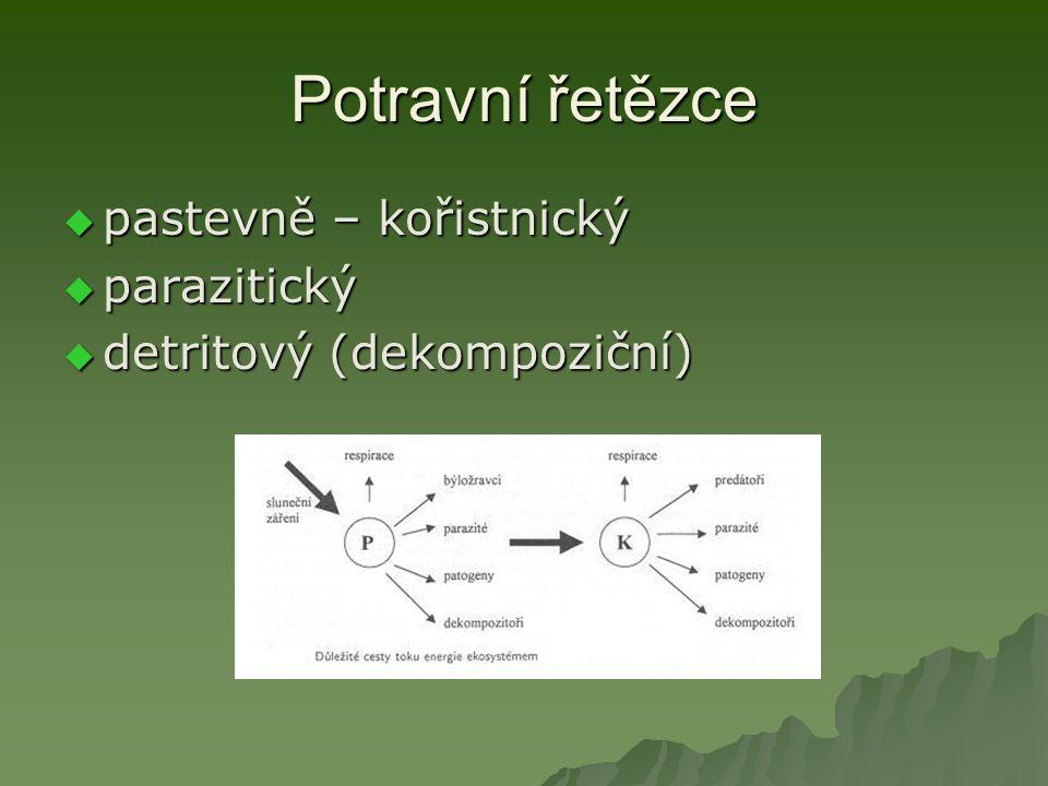 Potravní řetězce pastevně – kořistnický parazitický