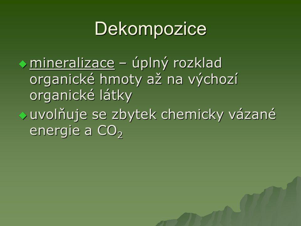 Dekompozice mineralizace – úplný rozklad organické hmoty až na výchozí organické látky.