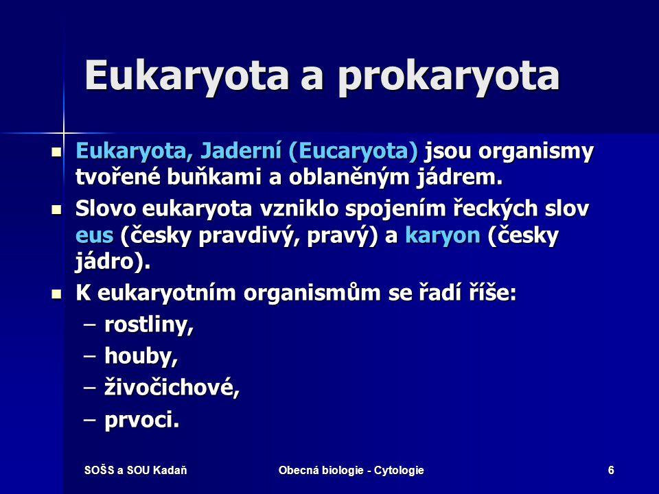 Eukaryota a prokaryota