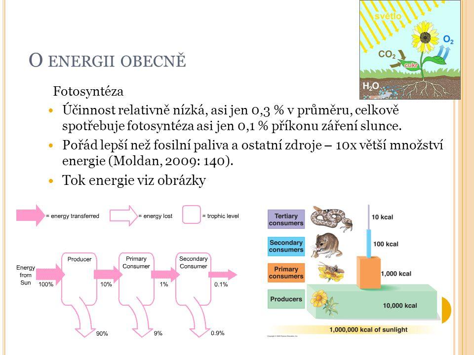 O energii obecně Tok energie viz obrázky Fotosyntéza