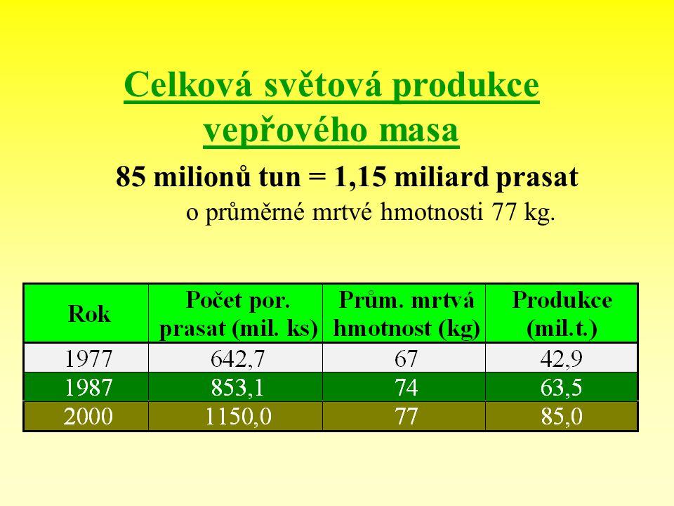 Celková světová produkce vepřového masa