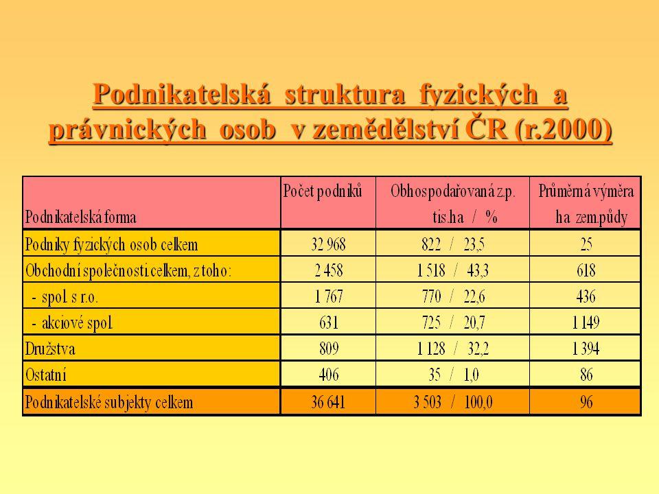 Podnikatelská struktura fyzických a právnických osob v zemědělství ČR (r.2000)