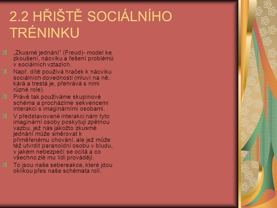 2.2 HŘIŠTĚ SOCIÁLNÍHO TRÉNINKU