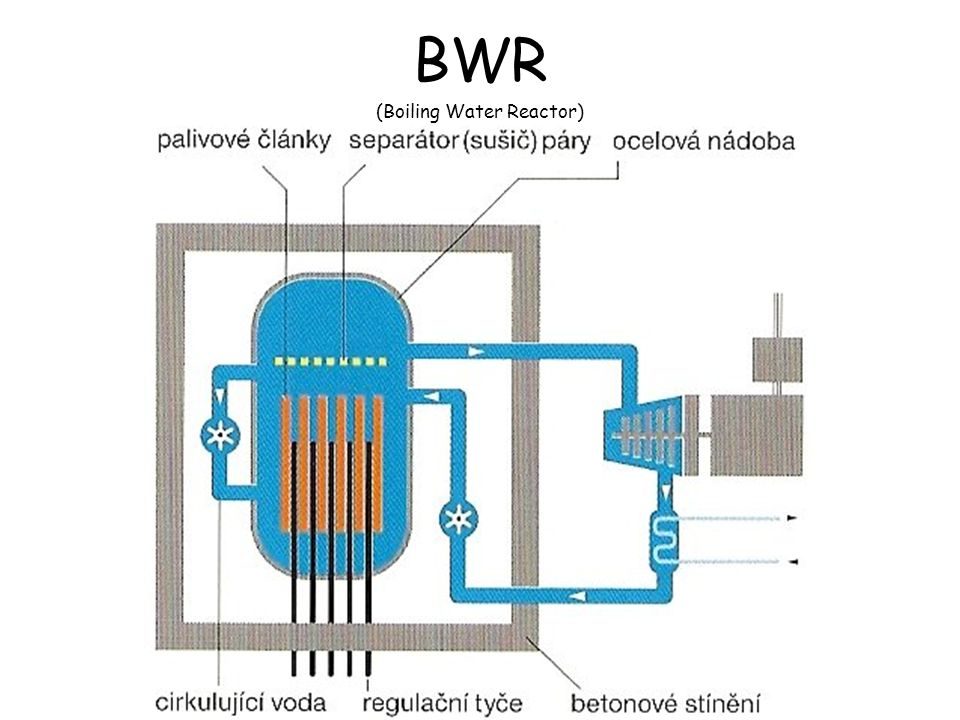 (Boiling Water Reactor)