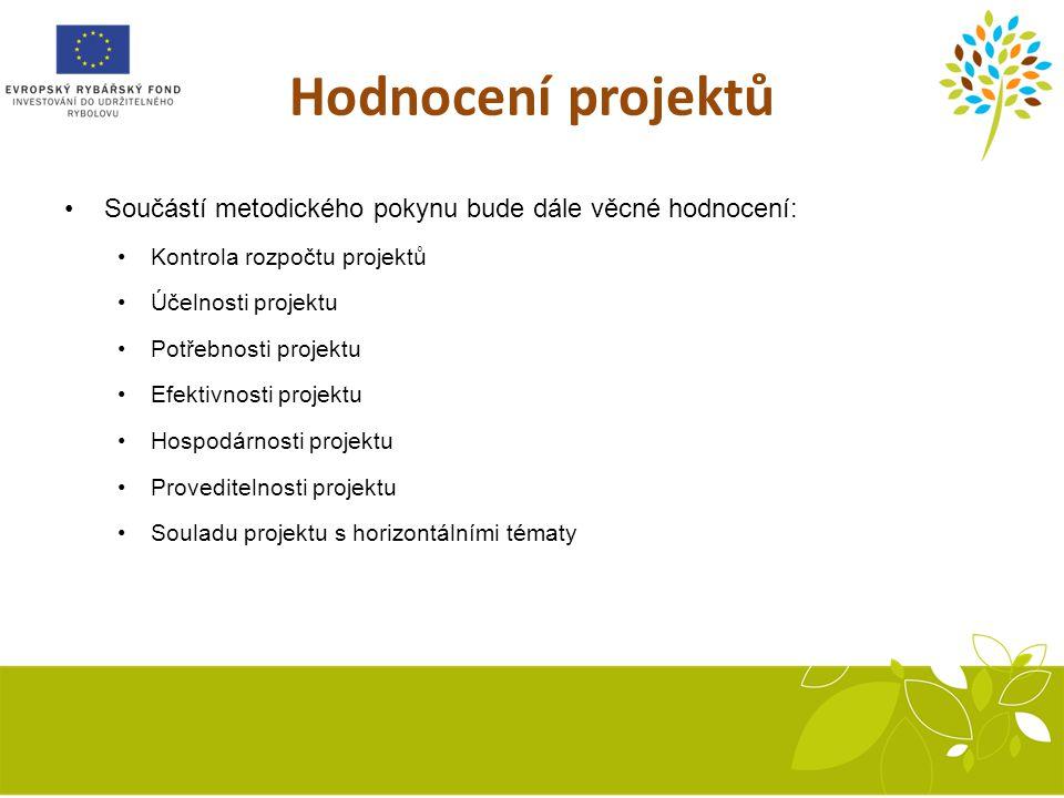 Hodnocení projektů Součástí metodického pokynu bude dále věcné hodnocení: Kontrola rozpočtu projektů.