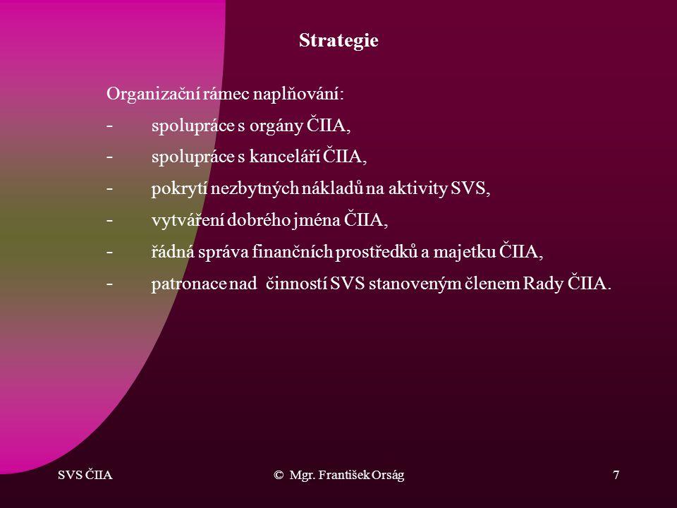 Strategie Organizační rámec naplňování: spolupráce s orgány ČIIA,