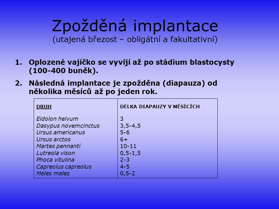 Zpožděná implantace (utajená březost – obligátní a fakultativní)
