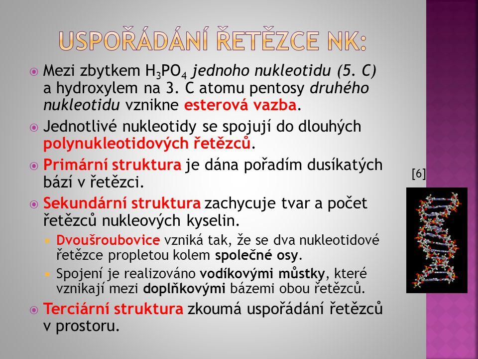 USPOŘÁDÁNÍ ŘETĚZCE NK:
