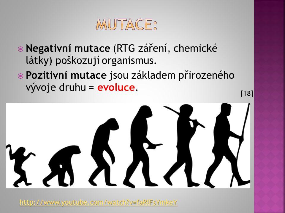 Mutace: Negativní mutace (RTG záření, chemické látky) poškozují organismus. Pozitivní mutace jsou základem přirozeného vývoje druhu = evoluce.