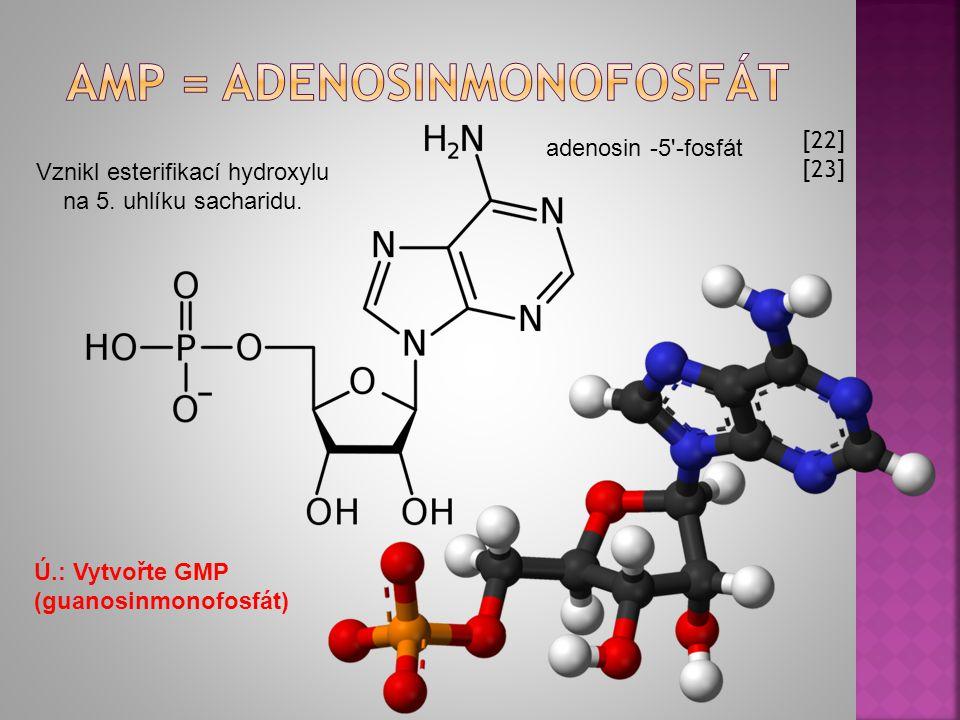 Amp = adenosinmonofosfát
