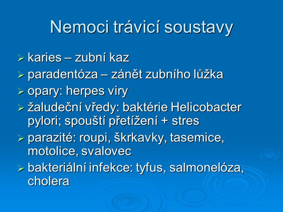 Nemoci trávicí soustavy
