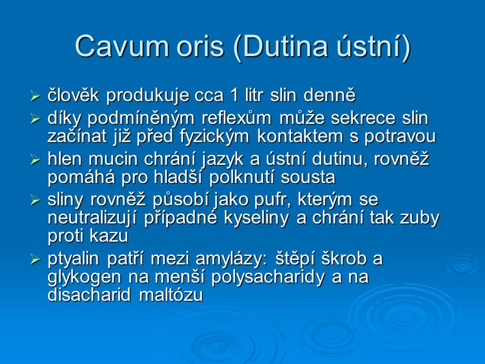 Cavum oris (Dutina ústní)