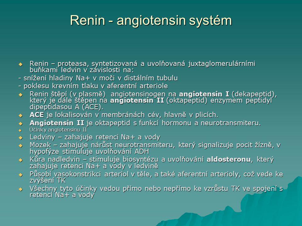 Renin - angiotensin systém